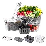 MRTプロ冷蔵庫オーガナイザービン-食物貯蔵容器-生産セーバーセーバー野菜果物貯蔵容器-冷蔵庫野菜と果物の収納ボックス-タッパーウェアセット-容器 BPAフリ(3パック)