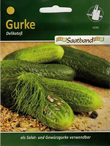 Salatgurke Delikateß Saatband Gemüse