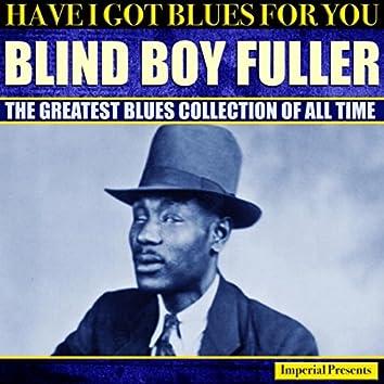 Blind Boy Fuller (Have I Got Blues Got You)