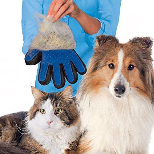 1 Stück Haustier Bürsten Handschuh – PetSinc Haustier Grooming Bürsten für Schonendes und Effizientes Pet Grooming – Deshedding Haarentferner Bürste für Hund, Katze – Real Touch Katze Hund Haarentferner Fellpflege Handschuh - 4