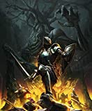 24inch x 29inch/60cm x 73cm Dark Souls 3 Silk Poster