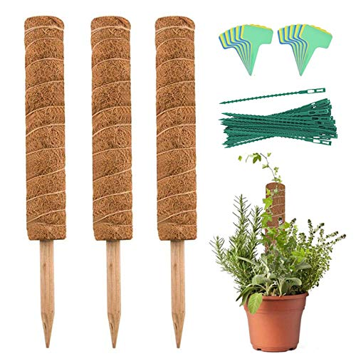 YEAJON 3 Packs 15.7 Inch Coir Moss Pole with 20 Pcs Plant Labels and 30 Pcs Plant Twist Ties, Coir Moss Totem Pole Stick for Plant Support Extension, Climbing Indoor Plants, Creepers
