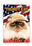NobleWorks, Trumpy Cat - Hilarious Birthday Card with Envelope - Funny Political Trump Greeting Card C4658BDG