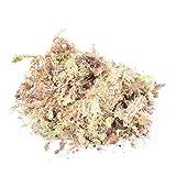 1pack 12l Sphagnum Secco Moss Garden Idratante Nutrizione Organico Fertilizzante Per Orchidea Phalaenopsis Musgo Sphagnum Alimentazione Comodo