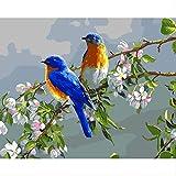 Pintura Al Óleo DigitalDiyCon Marco Interior Paisaje IdílicoRama DeFlores Pájaro Para Colorear40X50Cm