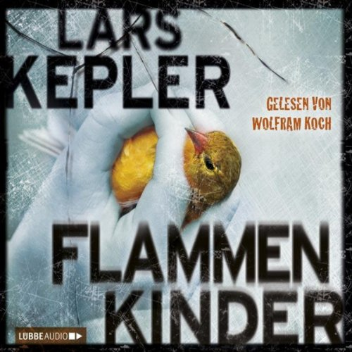 Flammenkinder audiobook cover art