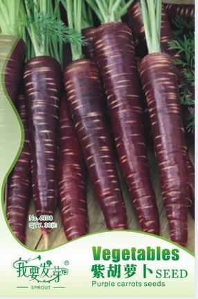 Violet Carotte plantes de ginseng de semences Graines, je veux pousser des carottes de paquet d'origine des graines, 30 particules / paquet
