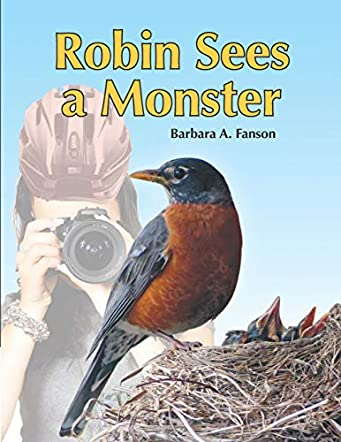 Robin Sees a Monster
