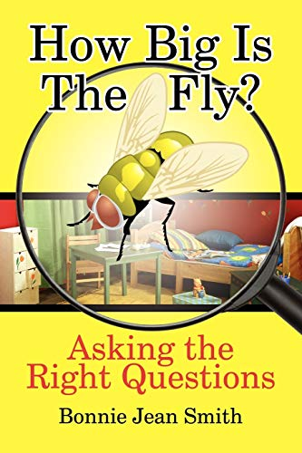 How Big is the Fly?: Asking the Right Questions