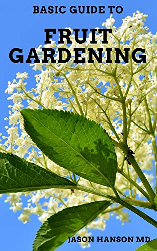 BASIC GUIDE ON FRUIT GARDENING : Guide On How You Could...