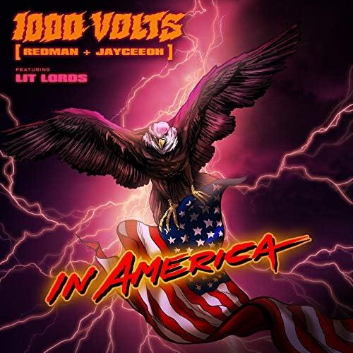 1000volts, Redman & Jayceeoh feat. Lit Lords