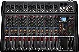 Depusheng DA12 Interfaccia controller audio DJ con unità USB per registrazione su computer Mixer audio da studio a 12 canali - Jack microfono XLR, alimentazione 48V, ingresso/uscita RCA
