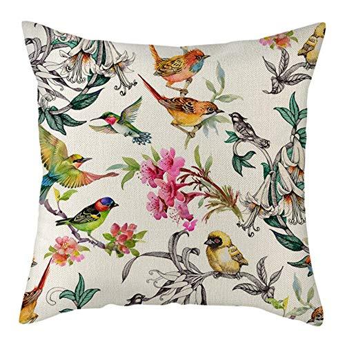 Fundas de Cojín Decorativos Pájaro colorido Cuadradas Terciopelo Suave Funda de Almohada Cubierta para Cojines Sofá Sala de Estar Dormitorio Cama Decorativo Throw Pillow Case Pillowcase,60x60cm T2567