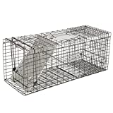 """Best Raccoon Traps - ZENY Live Animal Cage Trap 32"""" X 12.5"""" Review"""