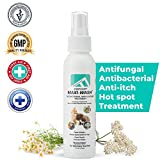 Forticept Antimicrobial Burn & Wound Spray
