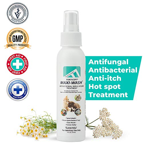 Forticept Maxi-Wash Antimicrobial Wound and Skin Treatment, Cleanser Spray for Hot Spots, Itch, Burns, Pyoderma, Sores for Dogs, Cats, and Other Pets 4 oz.