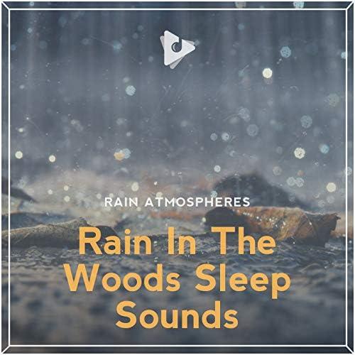 Rain Atmospheres, Rain for Deep Sleep & Nature Sounds At Home