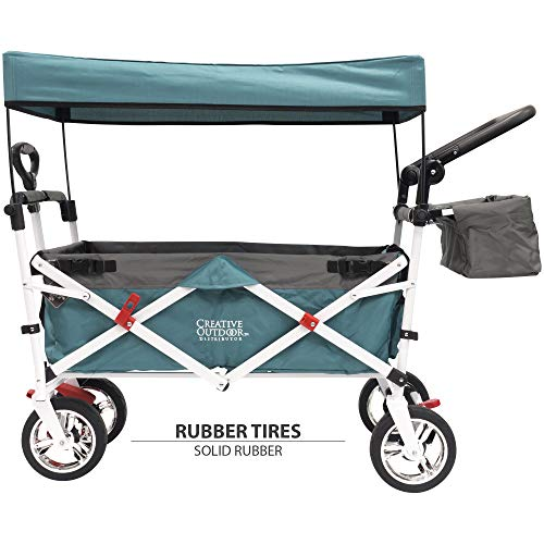 Push Pull Wagon for Kids, Foldable with Sun/Rain Shade (Teal)