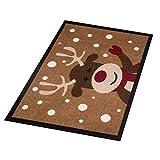 Hanse Home Fußmatte Schmutzfangmatte, Polyamid, Braun, 40x60 cm - 3