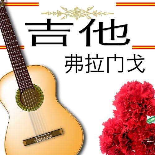 Various flamenco guitarrist