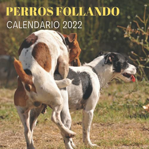 Perros Follando Calendario 2022: Regalos Gracioso Para Amantes de los Perros y Animales | Regalo de Broma | Divertidos Para Amigos, Mujer, Hombre, ... Niños, Adultos, Navidad, Cumpleaños