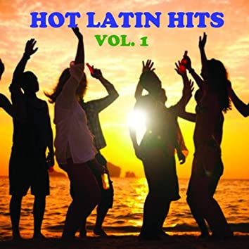 Hot Latin Hits, Vol. 1