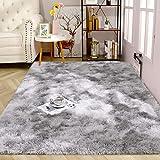 Alfombras ultra suaves para interiores, interiores y suaves Alfombras de sala de estar aptas para niños Dormitorio Decoración para el hogar Alfombras de dormitorio 60 * 120 cm (Degradado gris claro)