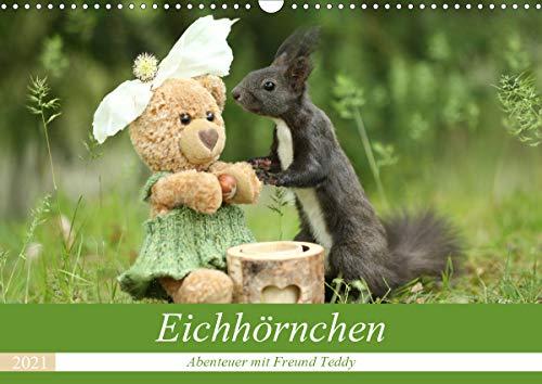 Eichhörnchen - Abenteuer mit Freund Teddy (Wandkalender 2021 DIN A3 quer)