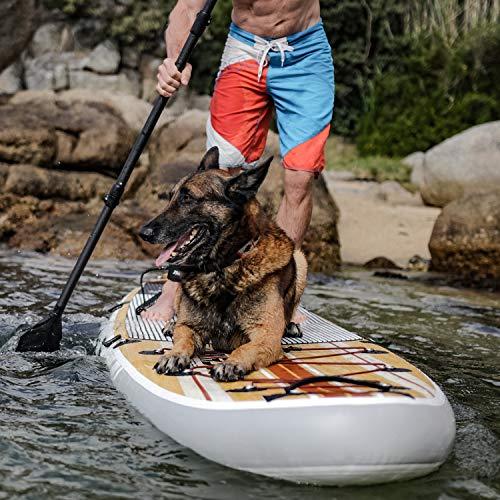 Thurso Surf Waterwalker - 6