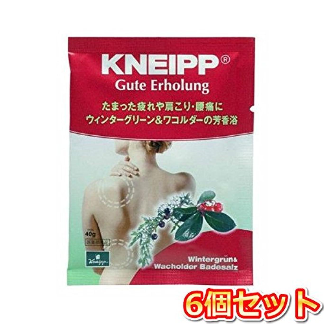 耳甘味蜂クナイプ?ジャパン クナイプグーテエアホールング ウィンターグリーン&ワコルダー 40g(医薬部外品) 6個セット