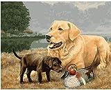 N-L Kit dePintura alóleo de Bricolaje Kit dePintura por números para niños y Adultos Guía Ceguera Perro Animal