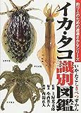 イカ・タコ識別図鑑 (釣り人のための遊遊さかなシリーズ)