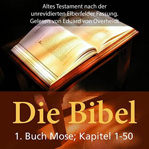 Die Bibel - Altes Testament audiobook cover art
