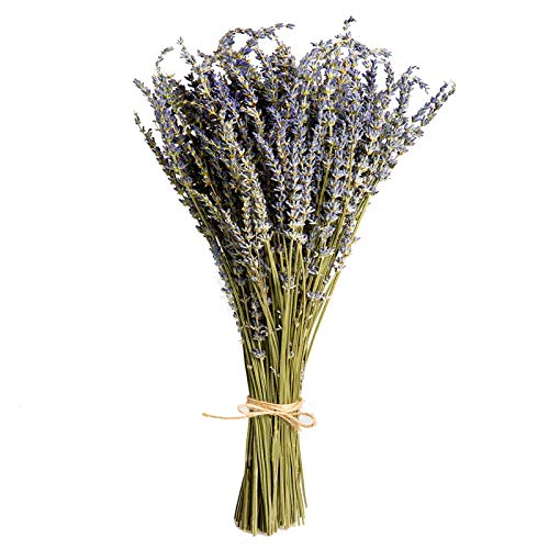 Skagele Lavender Dried Flowers, 100% Natural Lavender Dried Flowers Hand Picked, 4.6 oz Per Bunch 160-180 Stems,for Home Decoration, Photo Decor,Household Fragrance, Handmade Soap Flowers, DIY