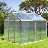 Zoom IMG-2 outsunny serra per piante porta