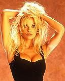 WonderClub Pamela Anderson 8.5