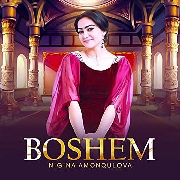 BOSHEM