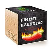 Feel Green Ecocube Piment Habanero, Idée Cadeau (100% Ecologique), Grow-Your-Own/Kit Prêt-à-Pousser, Plantes dans des Cubes en Bois 7.5cm, Produit en Autriche