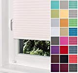 Home-Vision® Premium Plissee Faltrollo ohne Bohren mit Klemmträger / -fix (Creme, B55cm x H120cm) Blickdicht Sonnenschutz Jalousie für Fenster & Tür