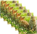 Set di 6 Coniglio Coniglio Pasquale Farfalla Prato Erba Verde Fiore Primaverile Sole DOT Bubble Tovaglioli di Stoffa Tovaglioli in Poliestere Lavabile per Tavolo da Pranzo Festa di20 X20