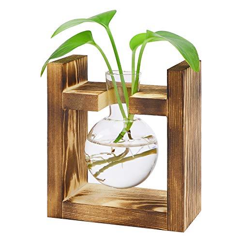 Florero de cristal para bombilla, jarrón de aguacate transparente con soporte de madera vintage para plantas hidropónicas, escritorio, hogar, jardín, decoración de boda (1 bombilla)