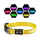 Dog Light Collar, Rechargeable Glow in The Dark Collar for Small Medium Large Dogs, Basic Dog Collars