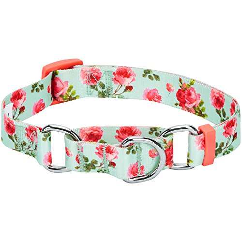 Blueberry Pet Spring Scent Inspired Rose Print Safety Training Martingale Dog Collar, Turquoise, Medium, Heavy Duty Adjustable Collars for Dogs