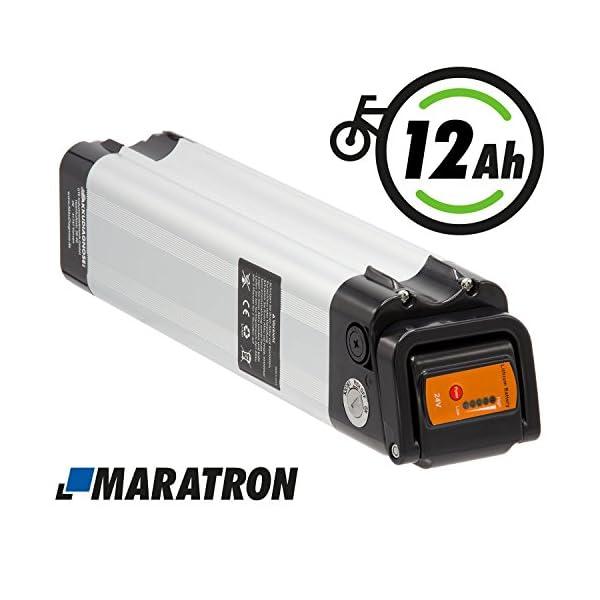 512kkXC48AL. SS600  - Maratron Komplettset Akku für E-Bike Pedelec 24V (25,9V) 12Ah 288Wh für u.a. Phylion,MiFa, Rex, Prophete