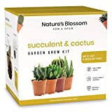 Nature's Blossom Succulents and Cacti Seed Starter Kit for Beginner Gardeners. Gardening Set with Cactus and...