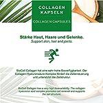 Capsules Biocell Collagen® ou Collagen Express (avec collagène II, acide hyaluronique, vitamine C et manganèse) 1 000 mg de collagène / jour pour la peau, les cheveux et les articulations, par NP-Vital (60 Biocell Collagen® capsules) #3