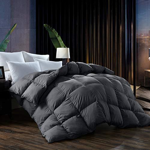 L LOVSOUL Down Comforter King All Season Duvet Insert,Soft Goose Down...