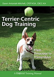the working jack russell terrier