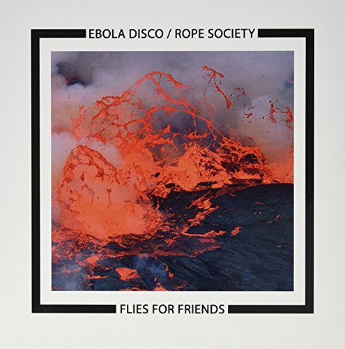 Flies For Friends [Vinilo]