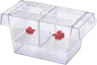 Tfwadmx Aquarium Fish Breeder BoxHatchery Incubator, Large Acrylic Fish Isolation Box for Crawfish Guppy Betta (7.8 in)